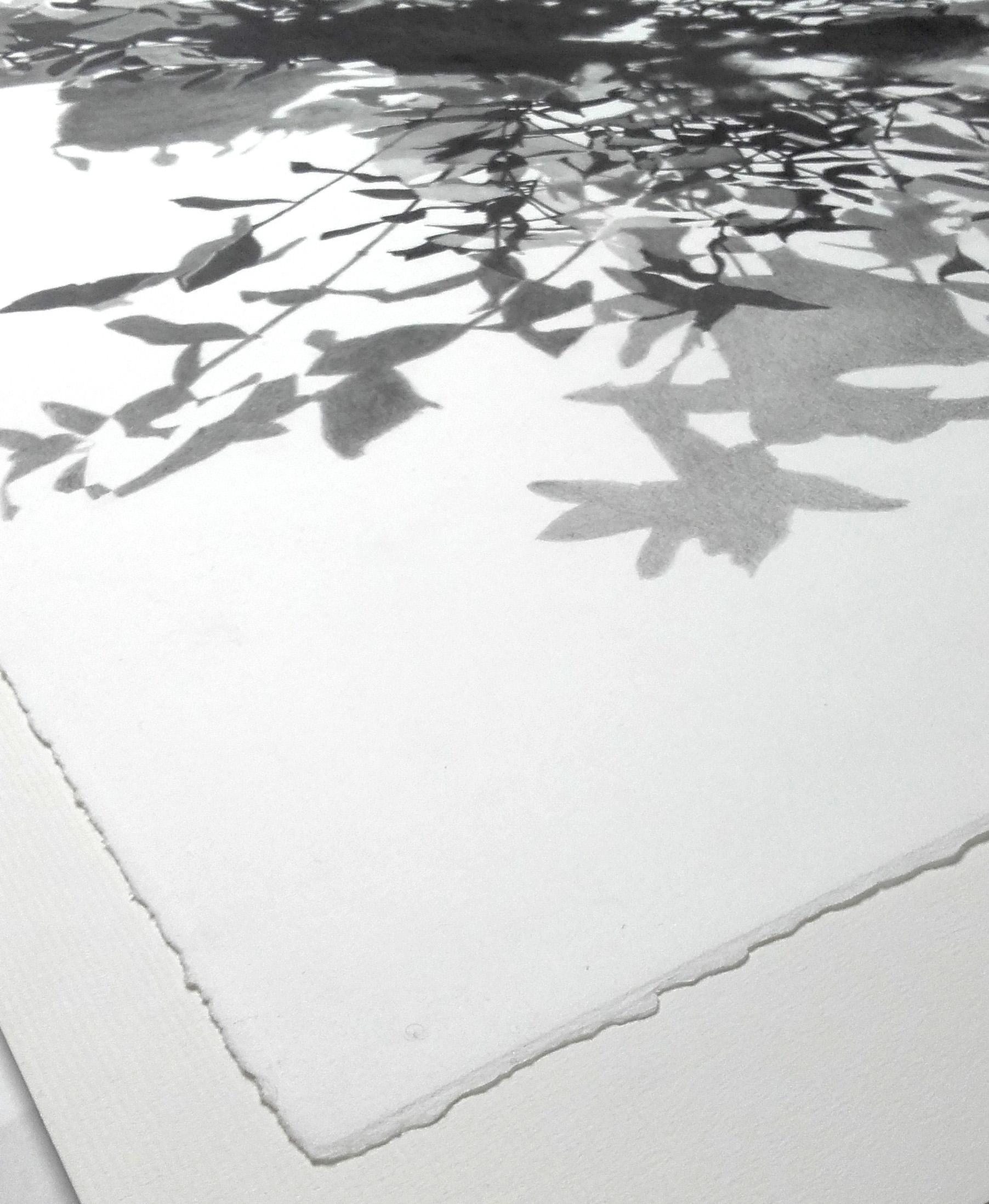 Tirage Fine Art Noir Et Blanc Quel Papier Choisir